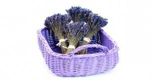 Lavender oil may help manage pain